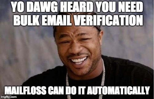 yo dawg heard you need email verification